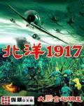北洋1917