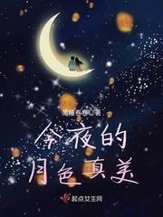 今夜的月色真美
