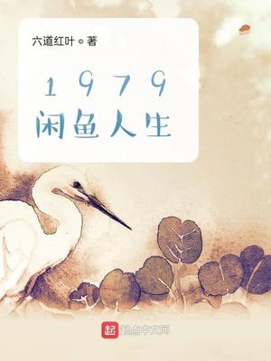 1979闲鱼人生